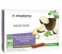 Arkofluide Bio Ultraextract Radis Noir Solution Buvable 20 Ampoules/10ml à Tours