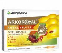 Arkoroyal Royal'fruits Gelée Royale Goji Grenade Baobab Solution Buvable 20 Ampoules/10ml à Tours