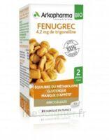 Arkogélules Fenugrec Bio Gélules Fl/40 à Tours