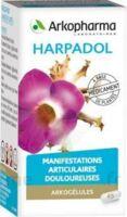 Arkogelules Harpagophyton Gélules Fl/150 à Tours