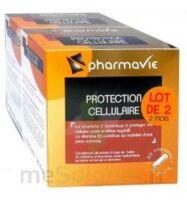 Bconcept Nutri Complex Protection Cellulaire Lot 2 Boîtes 30 Capsules à Tours