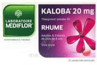 Kaloba 20 Mg Comprimé Pelliculé Plq/21 à Tours