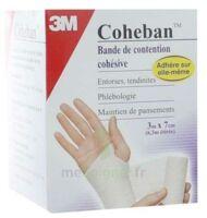 Coheban, Blanc 3 M X 7 Cm à Tours