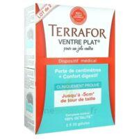 Terrafor Ventre Plat Gélules 2*50 à Tours