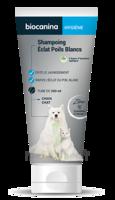 Biocanina Shampooing éclat Poils Blancs 200ml à Tours
