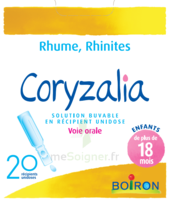 Boiron Coryzalia Solution Buvable Unidose B/20 à Tours