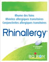 Boiron Rhinallergy Comprimés B/40 à Tours