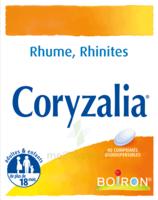 Boiron Coryzalia Comprimés Orodispersibles à Tours