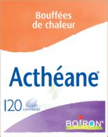 Boiron Acthéane Comprimés B/120 à Tours